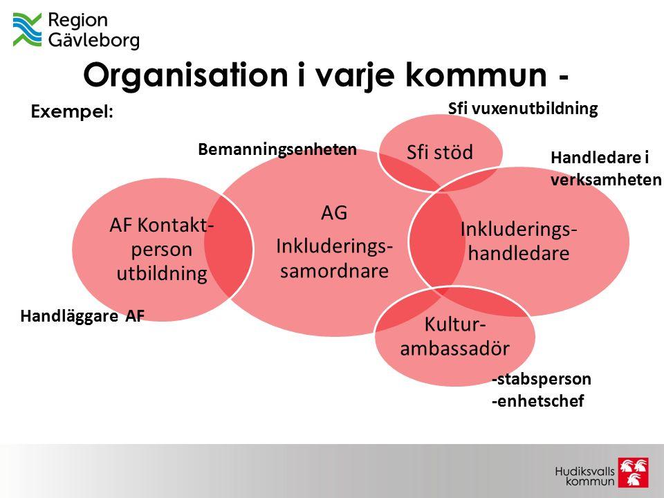 Organisation i varje kommun -