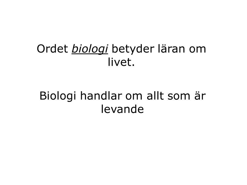 Ordet biologi betyder läran om livet.