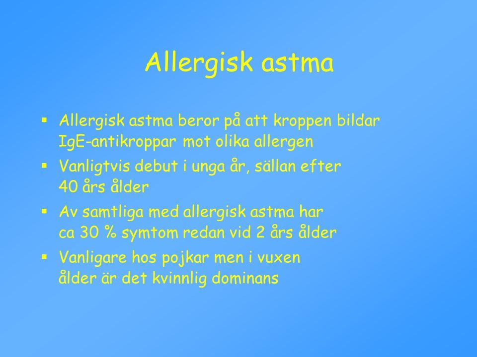 Allergisk astma Allergisk astma beror på att kroppen bildar IgE-antikroppar mot olika allergen.