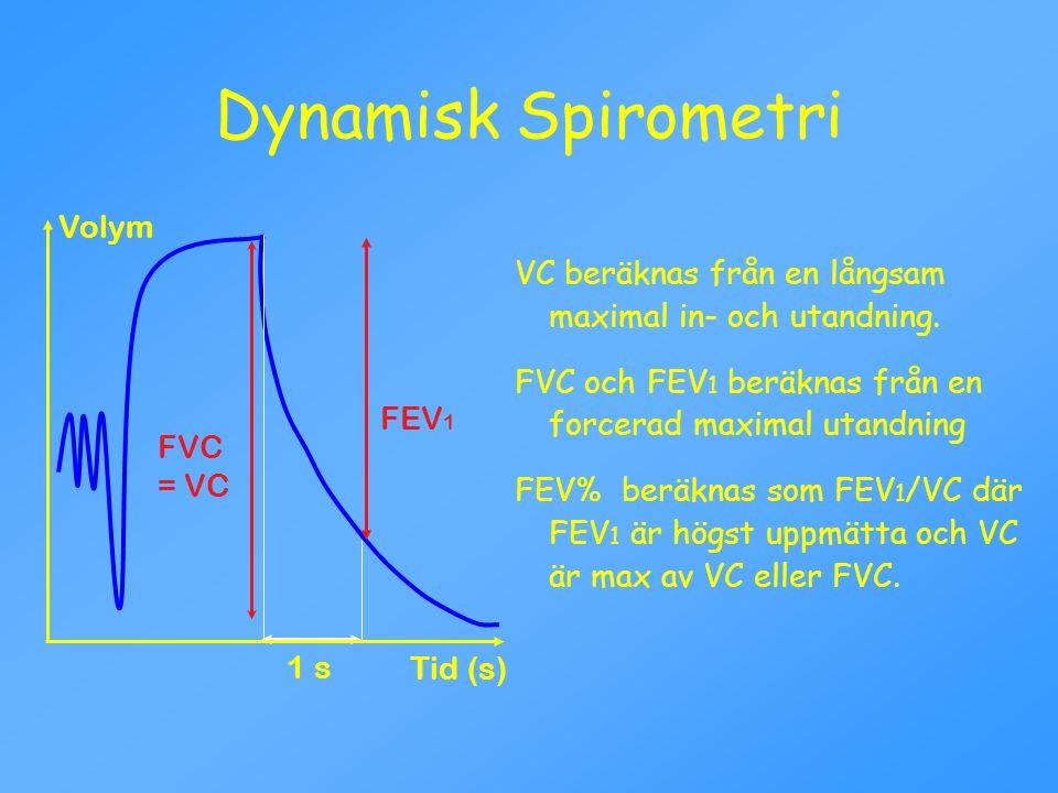 Dynamisk Spirometri Volym