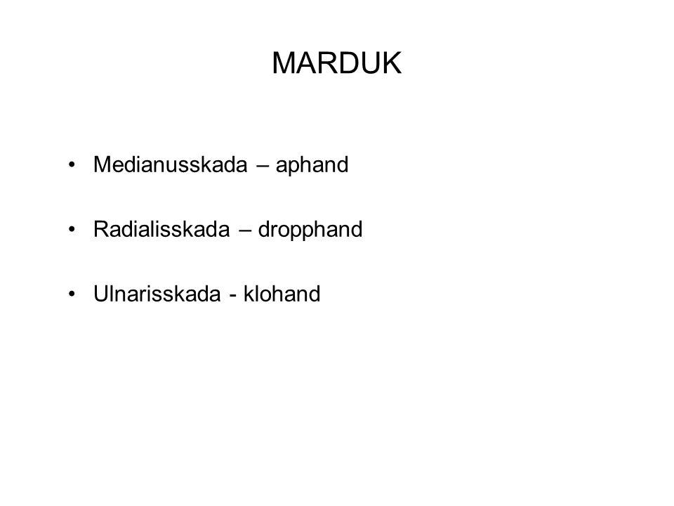 MARDUK Medianusskada – aphand Radialisskada – dropphand