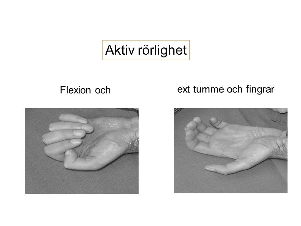 Aktiv rörlighet ext tumme och fingrar Flexion och
