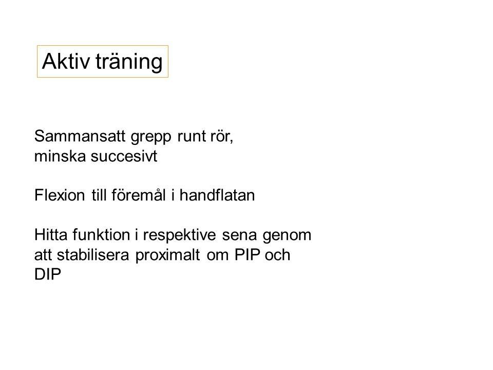 Aktiv träning