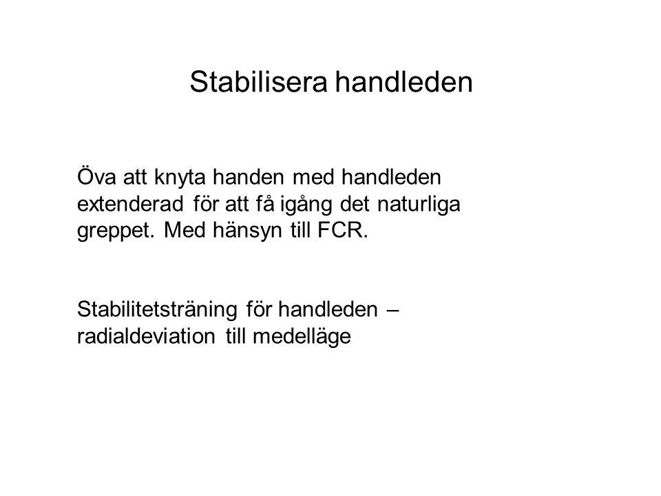 Stabilisera handleden