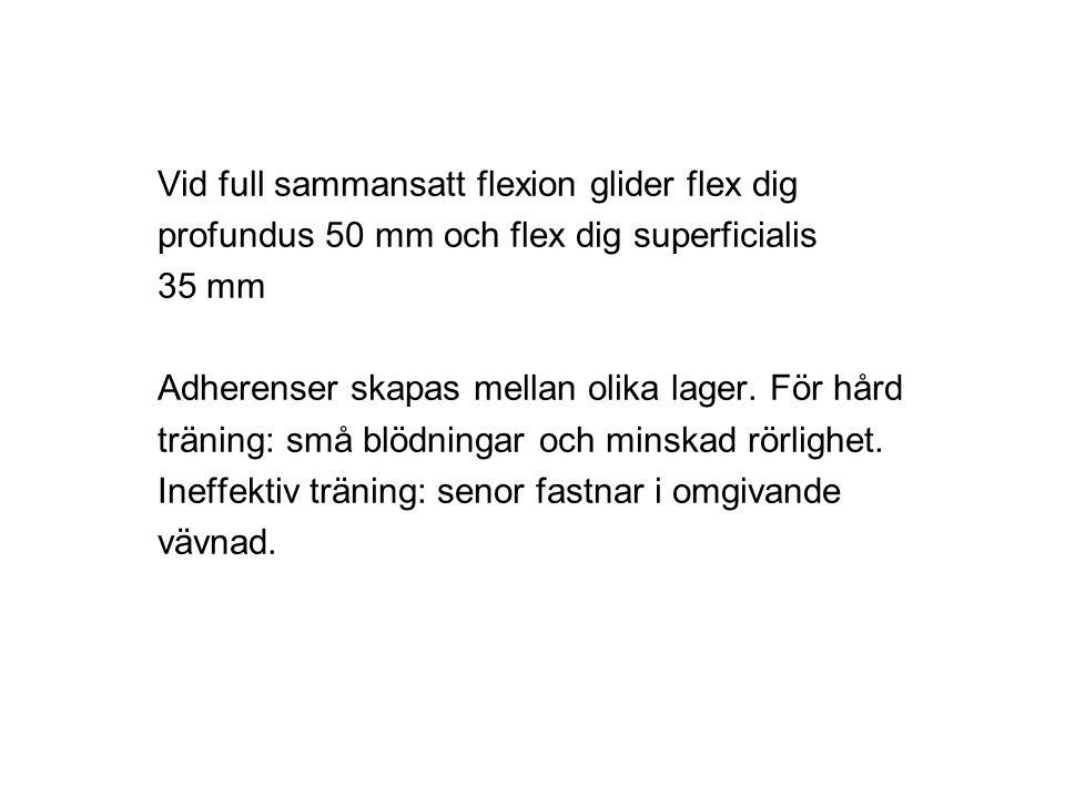 Vid full sammansatt flexion glider flex dig