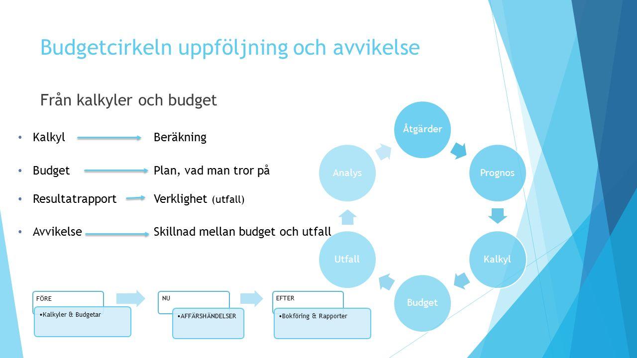 Budgetcirkeln uppföljning och avvikelse