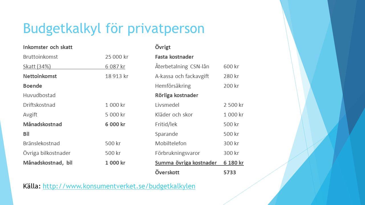 Budgetkalkyl för privatperson
