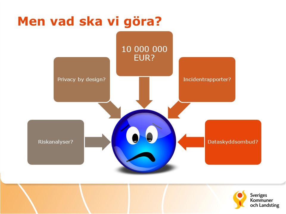 Men vad ska vi göra 10 000 000 EUR Riskanalyser Privacy by design