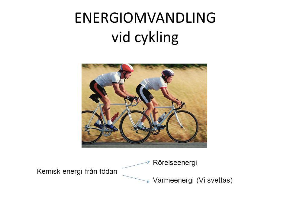ENERGIOMVANDLING vid cykling