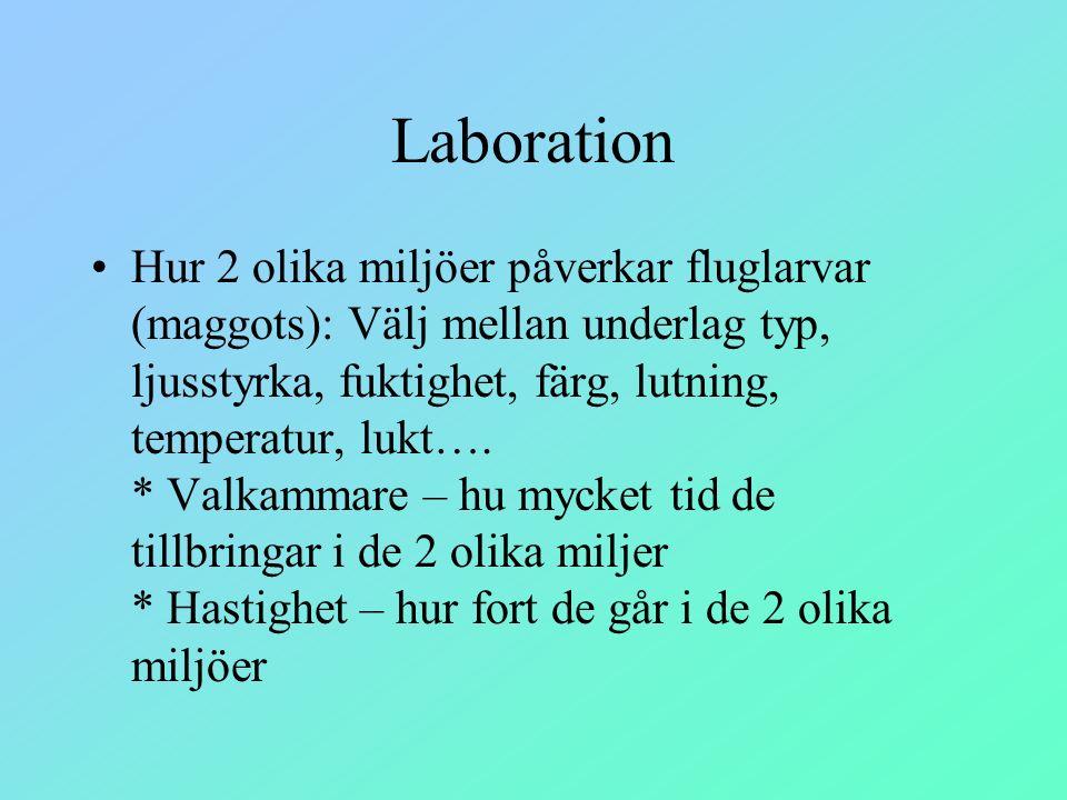 Laboration