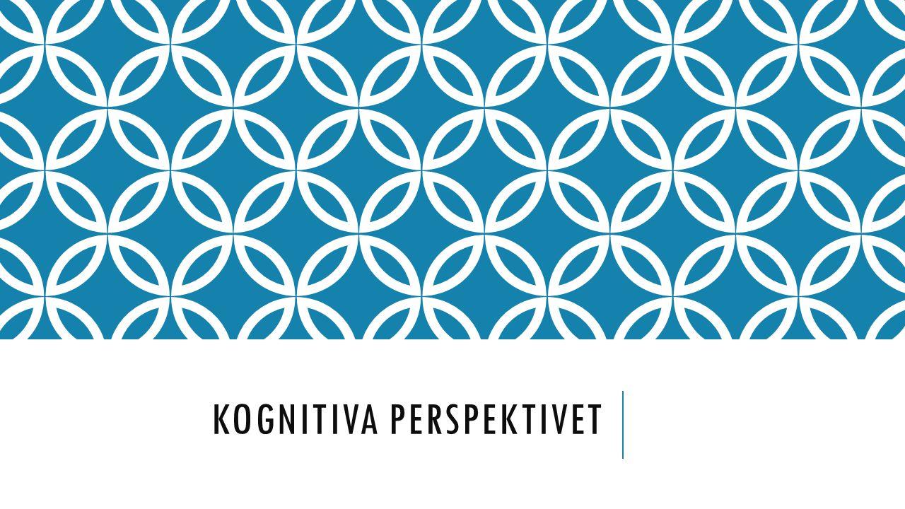 Kognitiva perspektivet