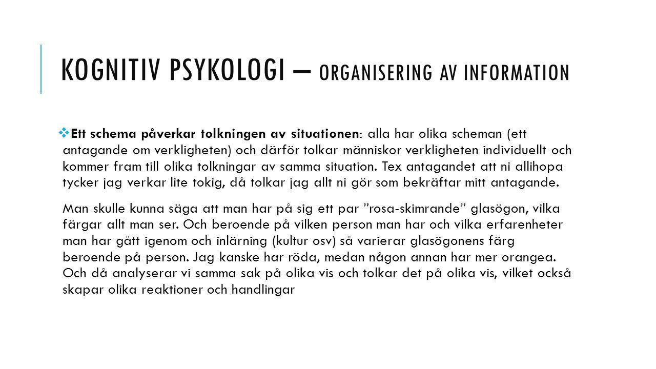 kognitiv psykologi – organisering av information