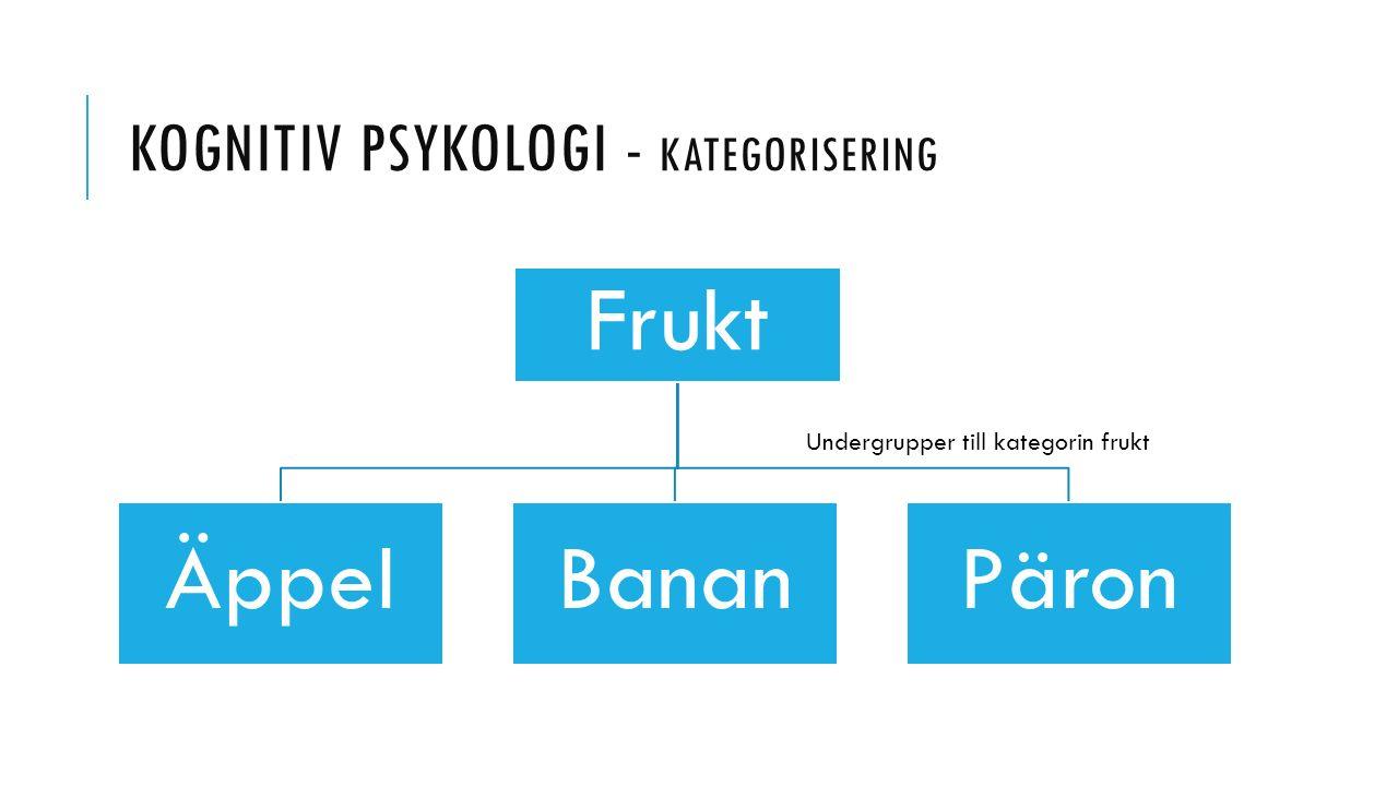 kognitiv psykologi - Kategorisering
