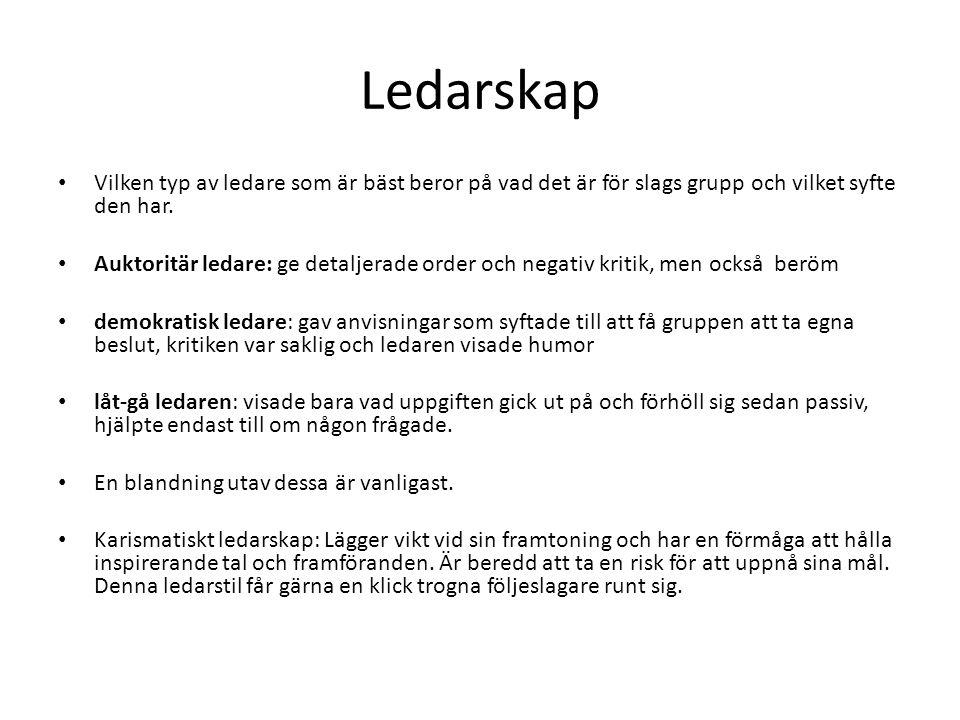 Ledarskap Vilken typ av ledare som är bäst beror på vad det är för slags grupp och vilket syfte den har.