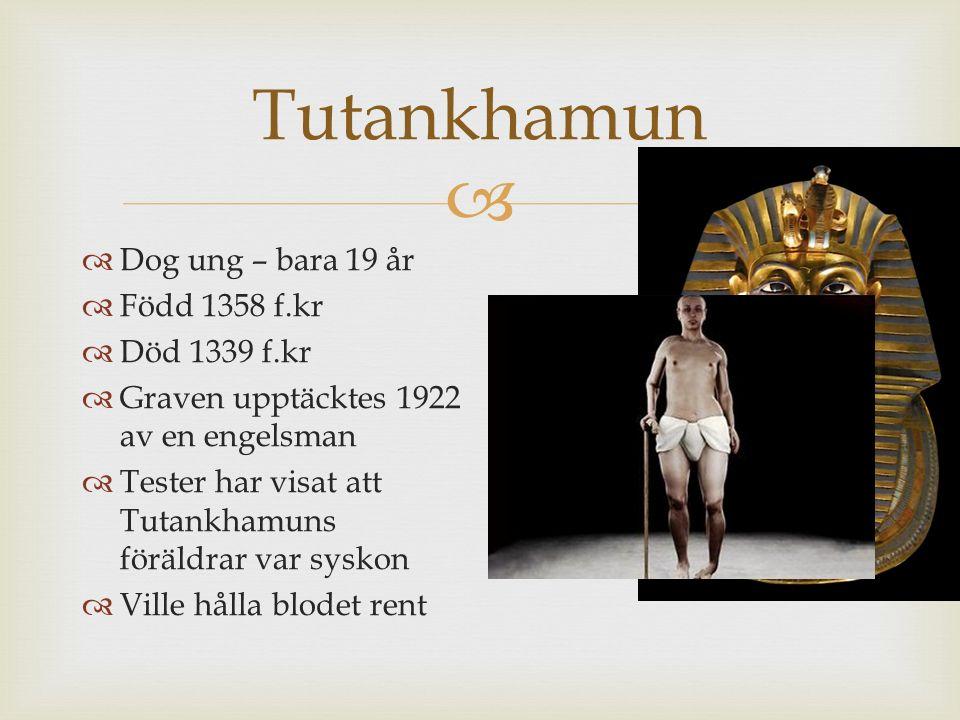 Tutankhamun Dog ung – bara 19 år Född 1358 f.kr Död 1339 f.kr