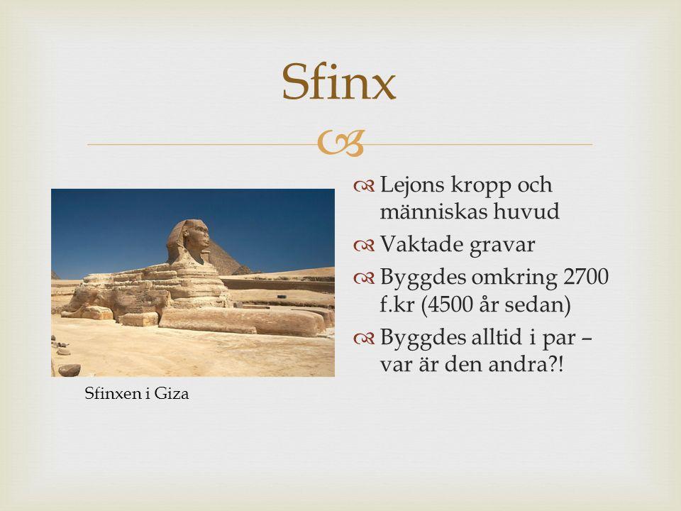 Sfinx Lejons kropp och människas huvud Vaktade gravar