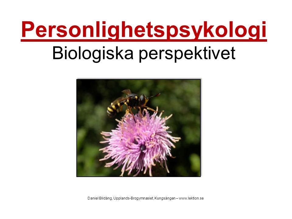 Personlighetspsykologi Biologiska perspektivet