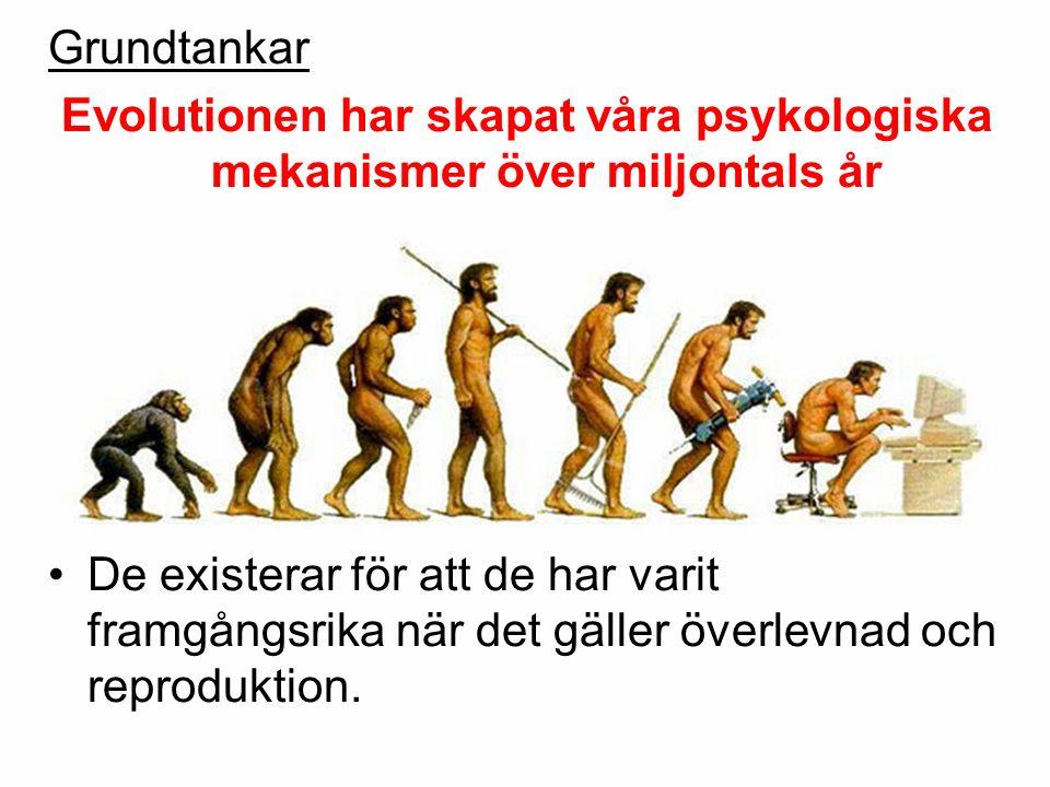 Evolutionen har skapat våra psykologiska mekanismer över miljontals år