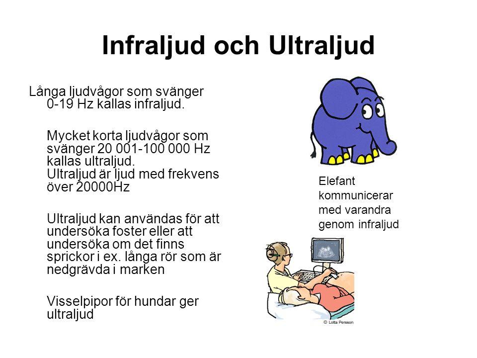 Infraljud och Ultraljud