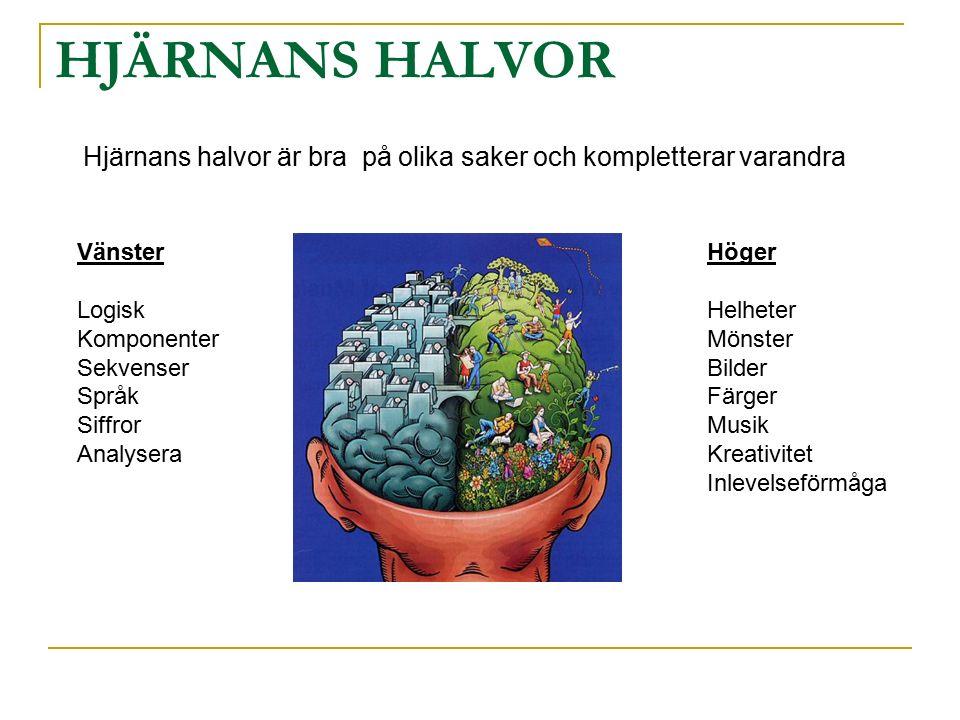 Hjärnans halvor är bra på olika saker och kompletterar varandra