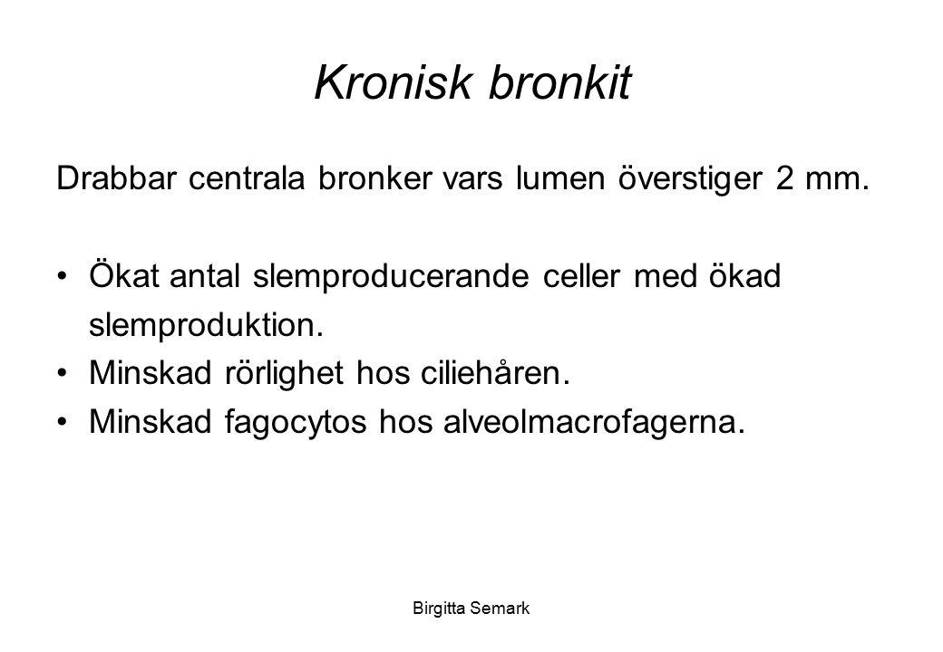 Kronisk bronkit Drabbar centrala bronker vars lumen överstiger 2 mm.