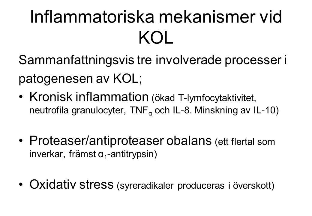 Inflammatoriska mekanismer vid KOL