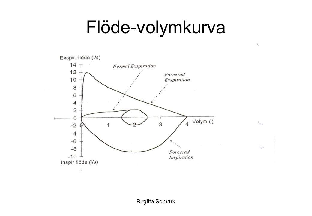 Flöde-volymkurva Birgitta Semark