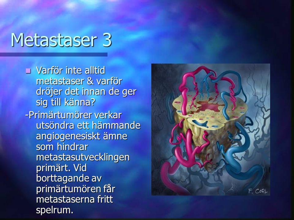 Metastaser 3 Varför inte alltid metastaser & varför dröjer det innan de ger sig till känna