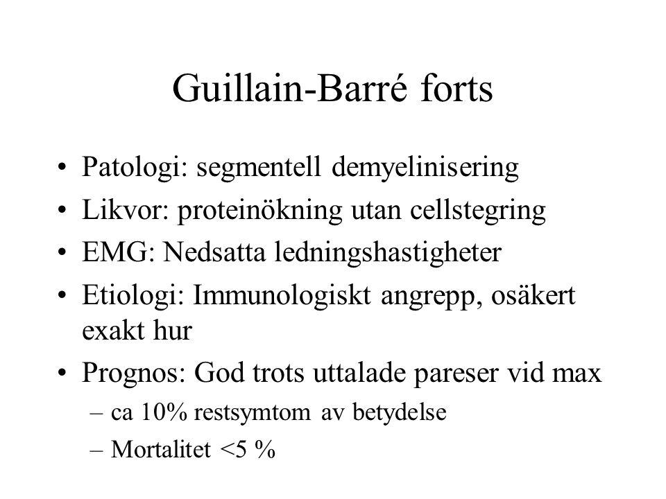 Guillain-Barré forts Patologi: segmentell demyelinisering