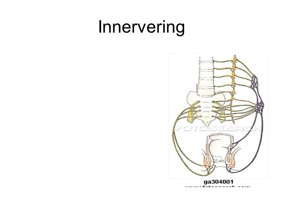 Innervering