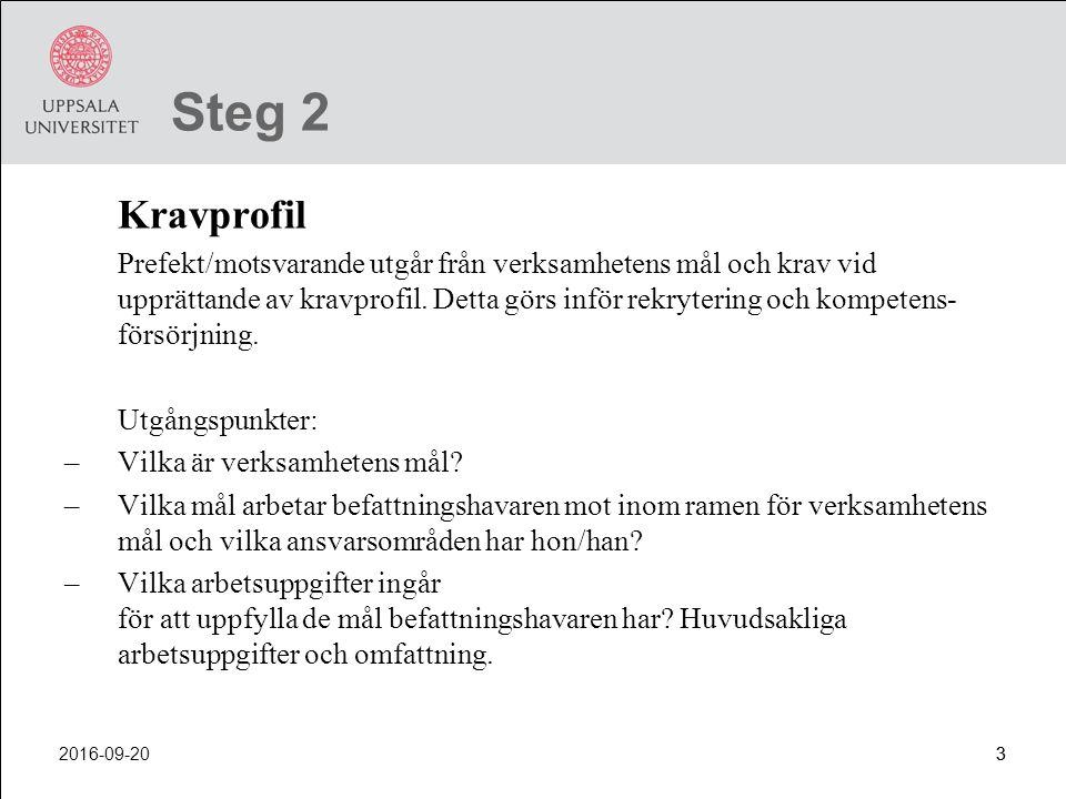 Steg 2 Kravprofil.