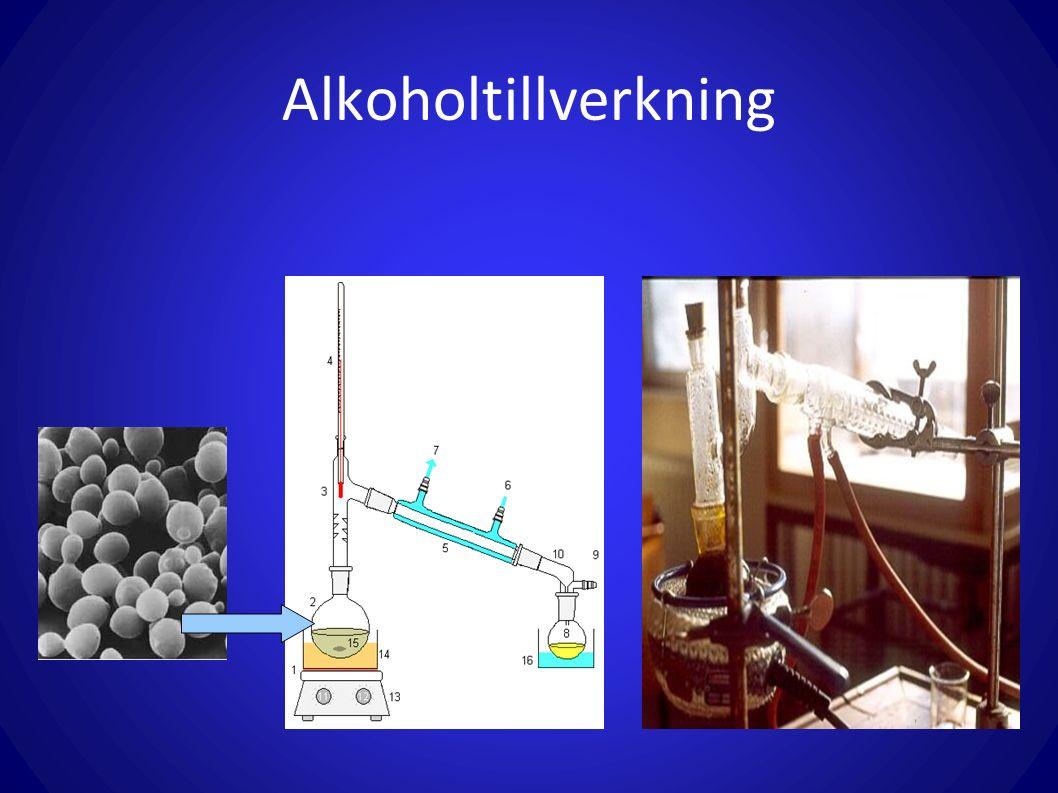 Alkoholtillverkning