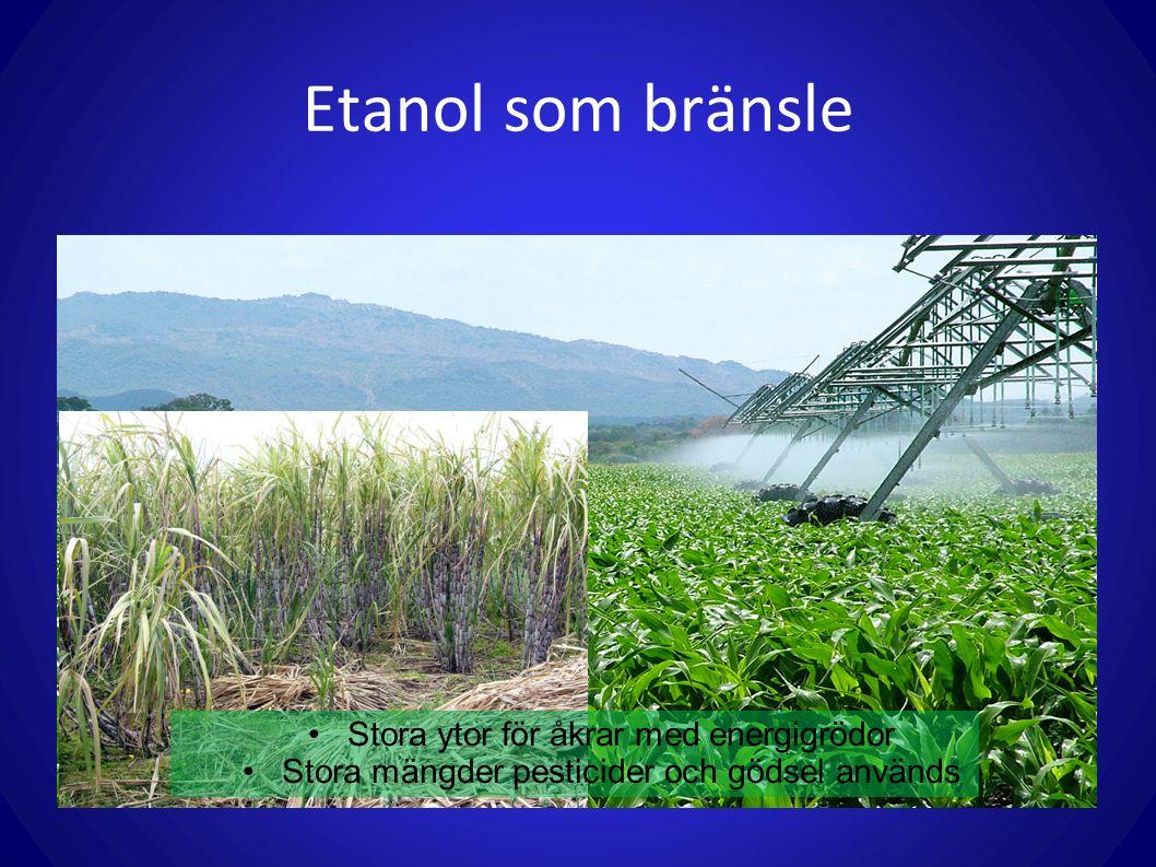 Etanol som bränsle Stora ytor för åkrar med energigrödor