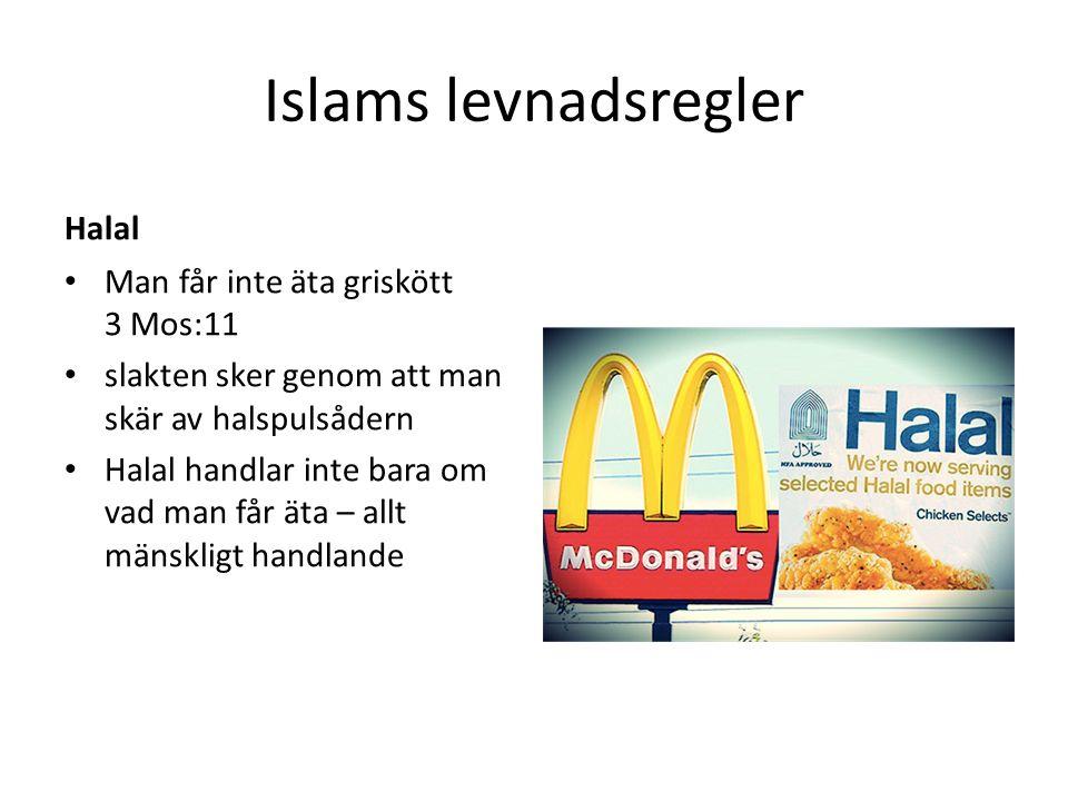 Islams levnadsregler Halal Man får inte äta griskött 3 Mos:11