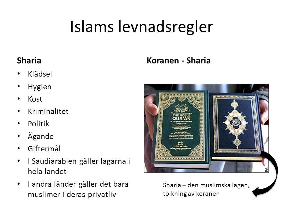 Islams levnadsregler Sharia Koranen - Sharia Klädsel Hygien Kost