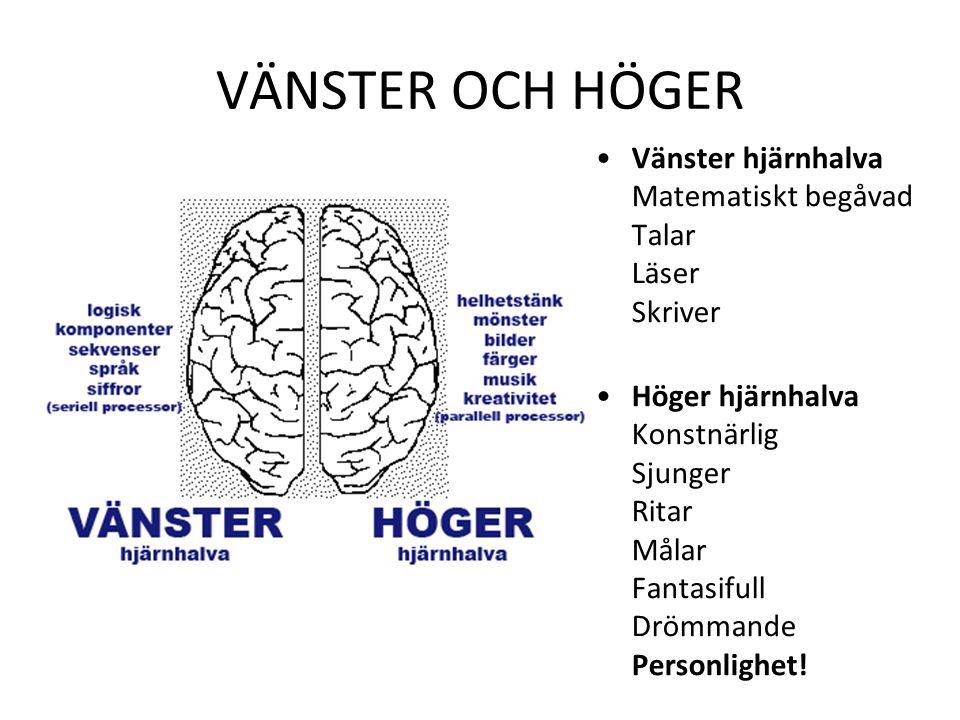 VÄNSTER OCH HÖGER Vänster hjärnhalva Matematiskt begåvad Talar Läser Skriver.
