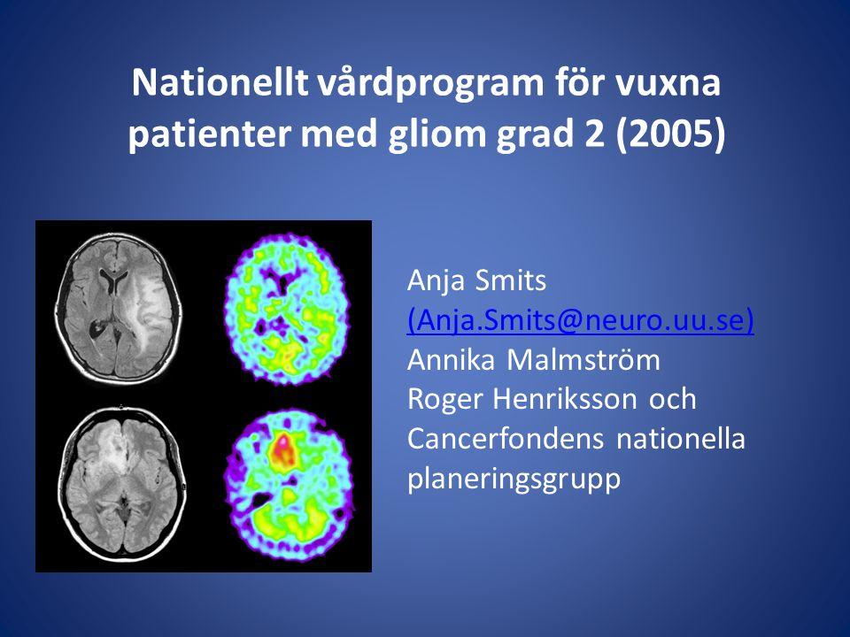 Nationellt vårdprogram för vuxna patienter med gliom grad 2 (2005)
