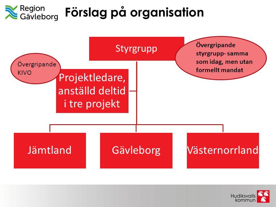 Förslag på organisation