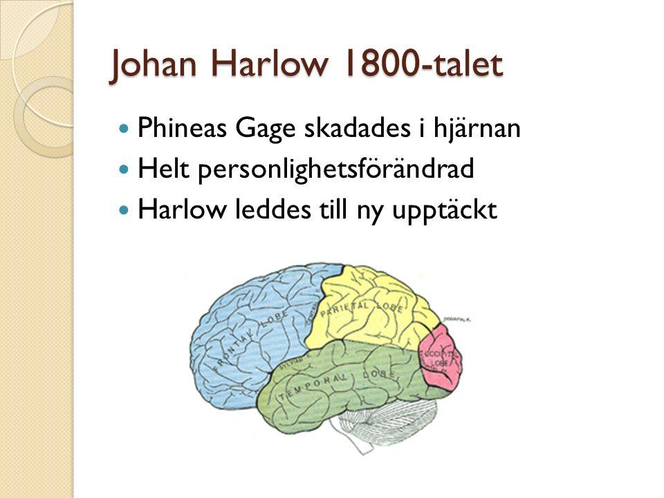 Johan Harlow 1800-talet Phineas Gage skadades i hjärnan