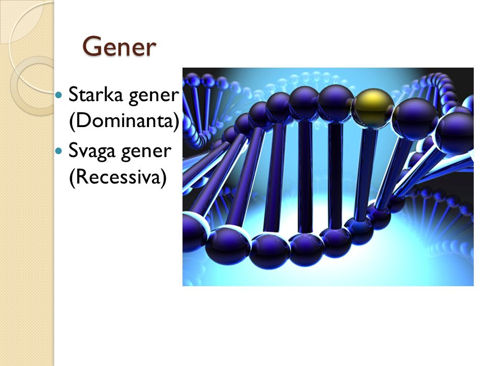 Gener Starka gener (Dominanta) Svaga gener (Recessiva)