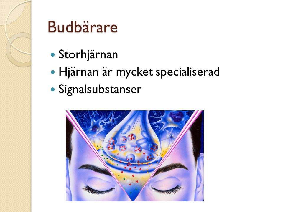 Budbärare Storhjärnan Hjärnan är mycket specialiserad Signalsubstanser