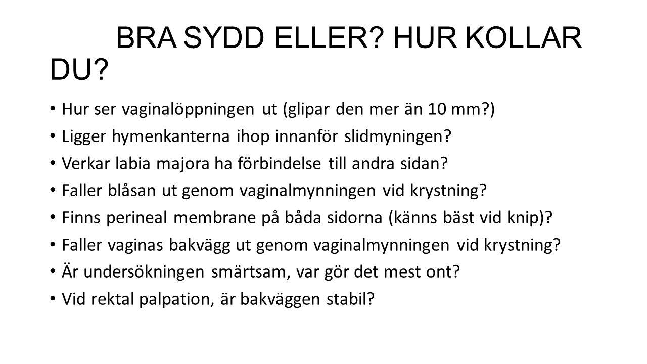 BRA SYDD ELLER HUR KOLLAR DU