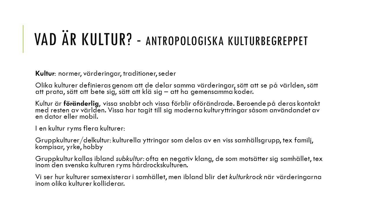 Vad är kultur - antropologiska kulturbegreppet