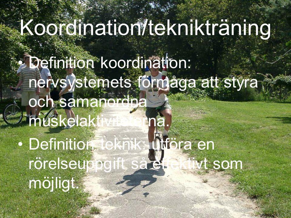 Koordination/teknikträning
