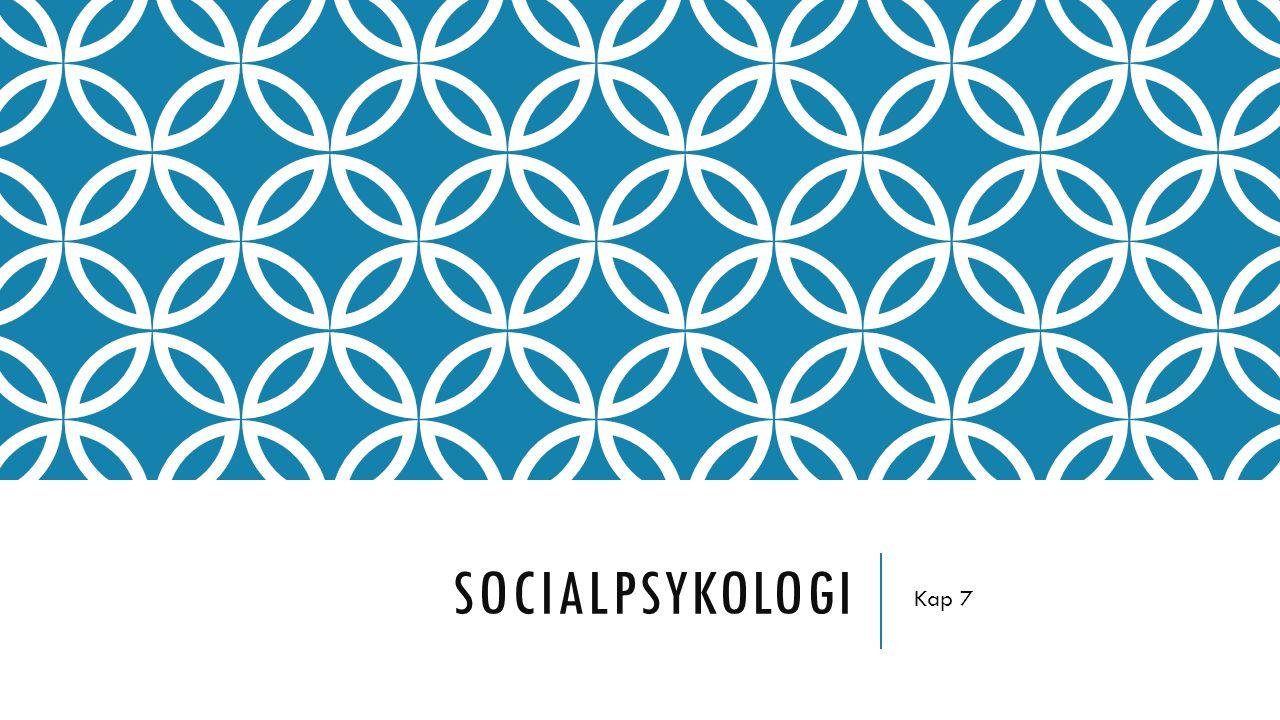 Socialpsykologi Kap 7