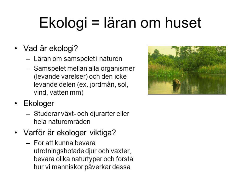 Ekologi = läran om huset