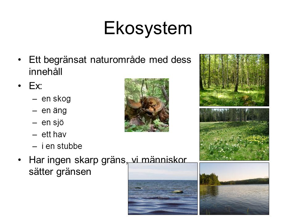 Ekosystem Ett begränsat naturområde med dess innehåll Ex: