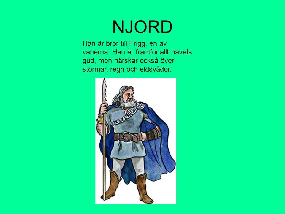 NJORD Han är bror till Frigg, en av vanerna.