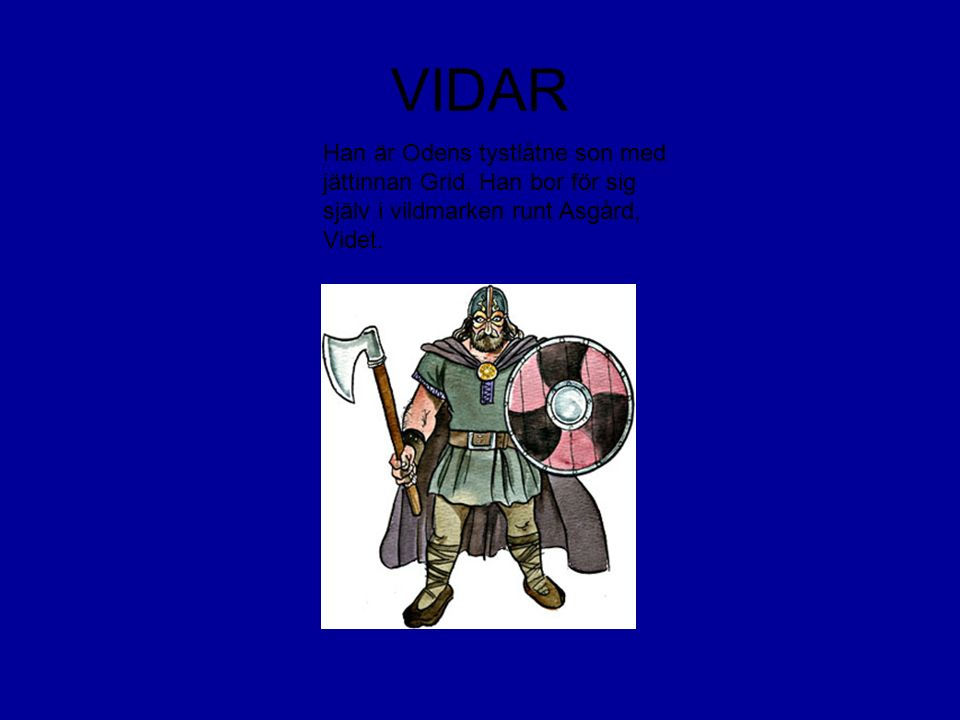 VIDAR Han är Odens tystlåtne son med jättinnan Grid.