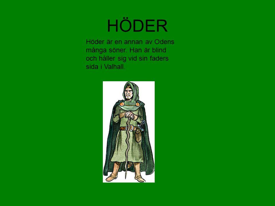 HÖDER Höder är en annan av Odens många söner.